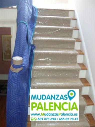 Transportes de Mascotas en Palencia